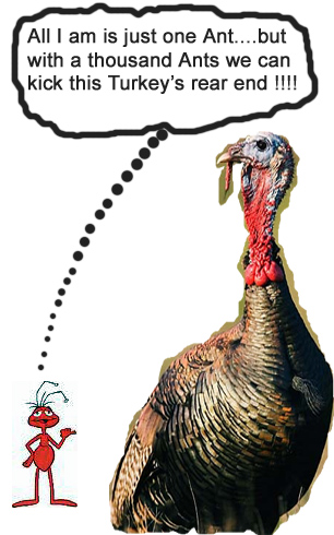 Ant vs. Turkey